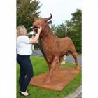 scale view bronze bull