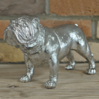 Silver Finish Bull Dog Ornament