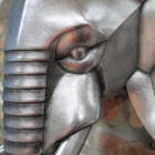 Close-up of the Face of the Elephant