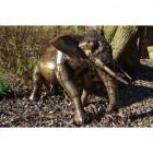 """""""Oteka"""" Elephant Calf Sculpture"""