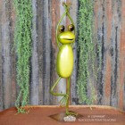 Green Yoga Frog in a Tree Pose