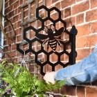Honeycomb Hanging Basket Bracket in Situ