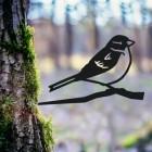 House Sparrow Tree Spike in Situ