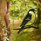 Bullfinch Tree Spike in Situ