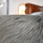 Close up of faux fur on Wilma the Woolly Mammoth