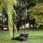 Beautiful Highland stag Sculpture in estate garden next to willow tree