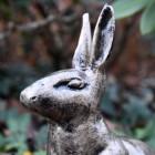 Close up of Gold Finish Sitting Rabbit Sculpture