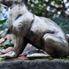 Close up of Sitting Rabbit Sculpture Body