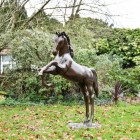 Rearing Horse Sculpture in Full