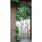 Traditional Iron Garden Gate with Bird Detailing