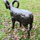 Rear view of Standing Ram Sculpture