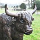 Side view of Highland Cow Sculpture in situ