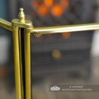 Close-up of the Mesh and Polished Brass Finish