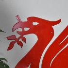 Close up of head on Large Red Liver Bird Wall Art