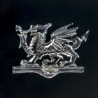 Detailed Image of Bright Chrome Welsh Dragon