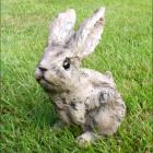 Rabbit garden Sculpture with Wood Effect