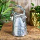 Extra Small Galvanised Watering Can