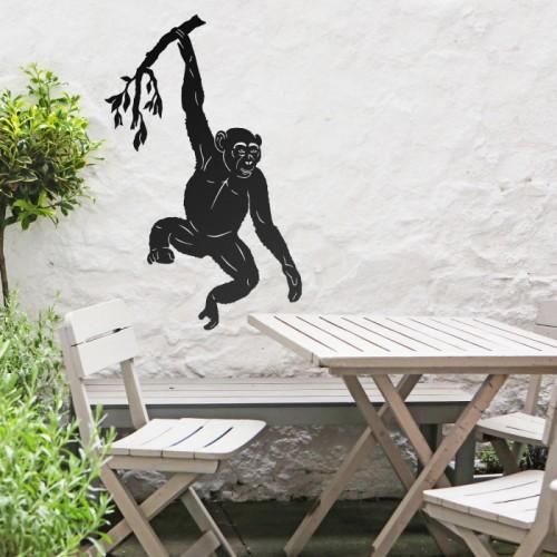 Chimpanzee Hanging Wall Art