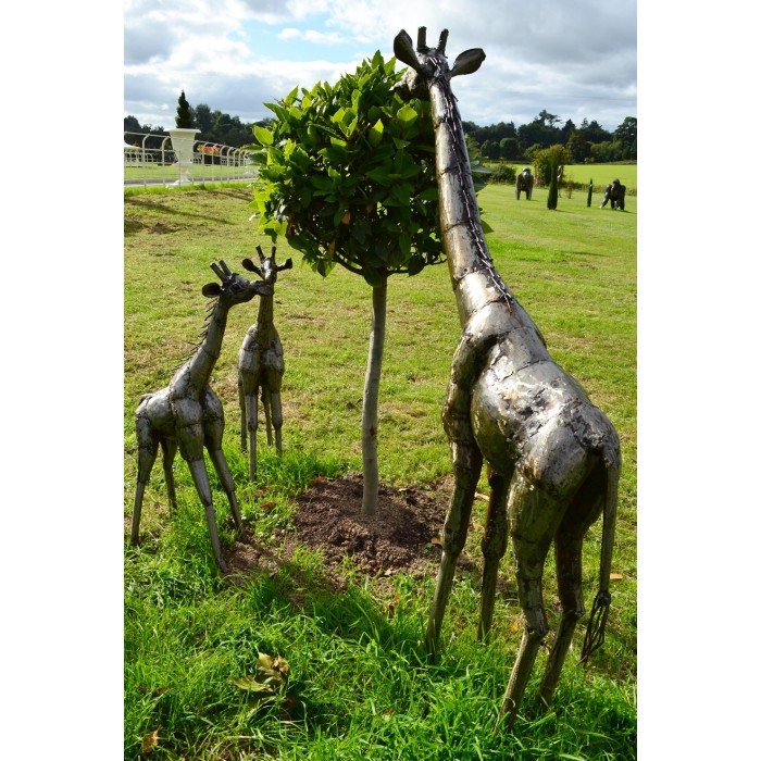 ... U201cKusafion Safariu201d Miniature Garden Giraffe Sculptures · U201c ...