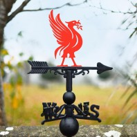 Red Liver Bird Weathervane