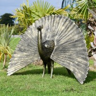 Bronze Finish Peacock Sculpture with Open Tail