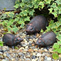 Cast Iron Hedgehog Family