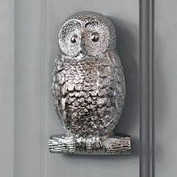 Bright Chrome Owl Door Knocker