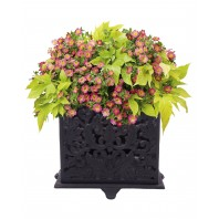 """Madeleine"" Ornate square planter"