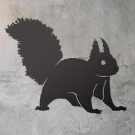 Red Squirrel Steel Wall Art