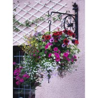 """Rose Wheel"" Hanging Basket Bracket"