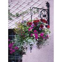 """""""Rose Wheel"""" Hanging Basket Bracket"""