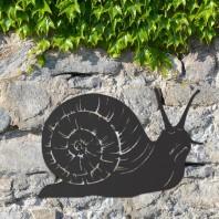 Black Snail Wall Art