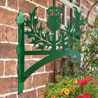Green Thistle Iron Hanging Basket Bracket