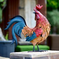 Cockerel with Metallic Tail Looking Back