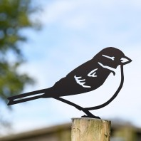 House Sparrow Black Fence Topper