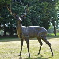 Bronze Standing Deer Sculpture