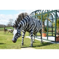 "Hand Painted ""Kalahari Cape"" Zebra Garden Sculpture"