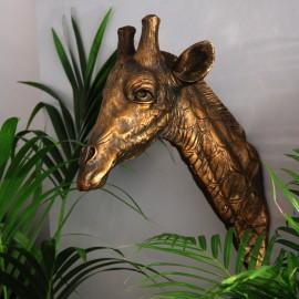 Giraffe Head Wall Bust in an Antique Gold Finish