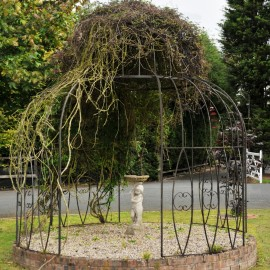 """The Black """"Alice's Folly"""" Garden Gazebo with Ivy Feature"""