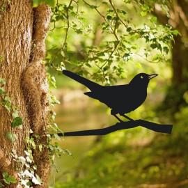 Blackbird Tree Spike Being Used Outside