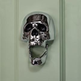 Bright Chrome Skull Door Knocker on pale green door