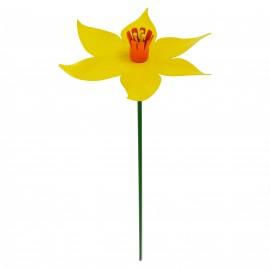 Yellow Daffodil Flower Spike