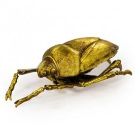 Beetle Wall Art in Gold
