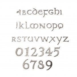 Rustic Chrome letters & numbers