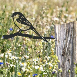 Long-Tailed Tit Spike in Situ on a Fence