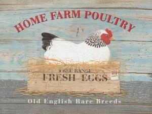 """Home Farm"" Hen Metal Sign"