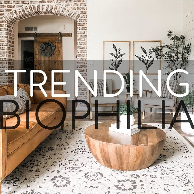 Biophilia: Bringing The Outside In
