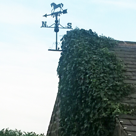 Horse roof-mounted weathervane