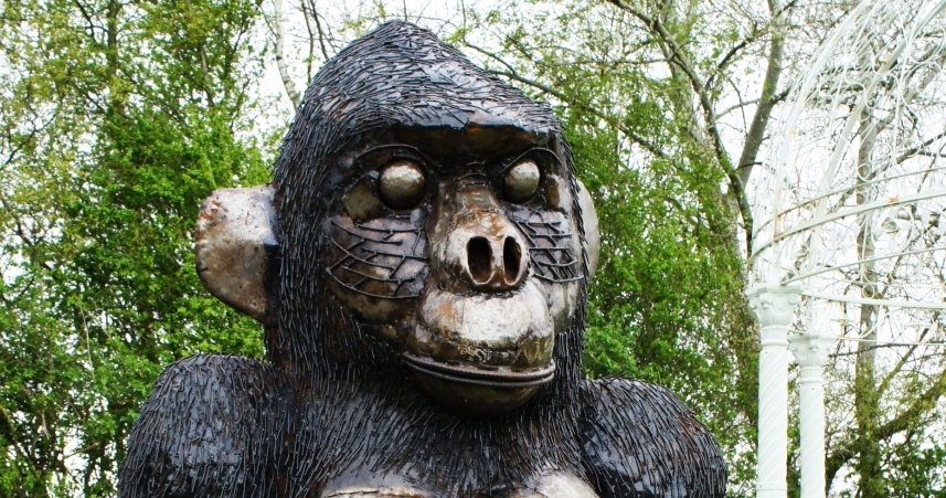 Close up of Giant Gorilla
