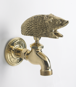 Polished Brass Hedgehog Garden Tap